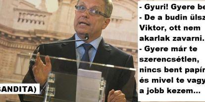 Amikor Matolcsy Gyuri elvesztette közjogi méltóságát! Egy elmeorvos vallomása.