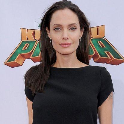 Vendégprofesszor lesz Angelina Jolie