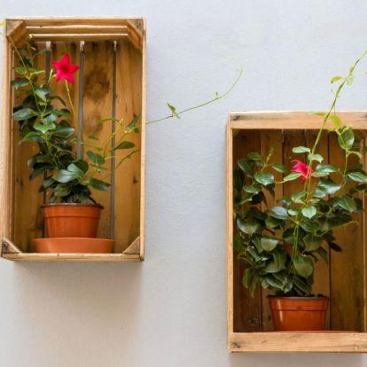 13 ötlet kreatív kertészeknek