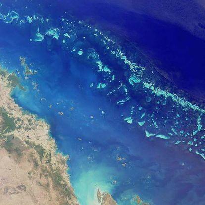 A teljes ökoszisztéma összeomlott a Nagy-korallzátony egyes részein