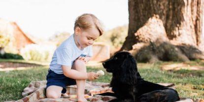 Kiakadtak az állatvédők a kis György hercegre