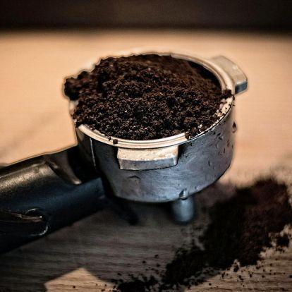 Egy természetes szer a macskák és csigák távoltartására: a kávézacc