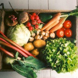Idényzöldségek: ebből főzzünk januárban