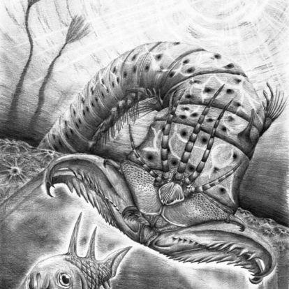 Félelmetes, ősi óriás gyűrűsféregre bukkant egy nemzetközi kutatócsoport