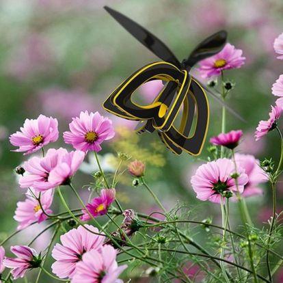 Méhecske drón