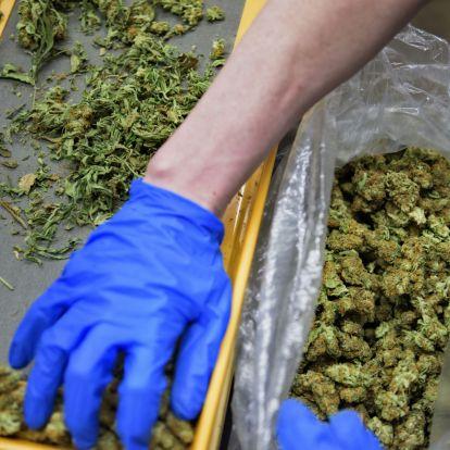 Észrevétlenül, de az orvosi marihuána már Magyarországra is betette a lábát
