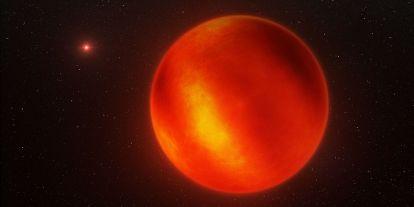 Rekorder barna törpét talált egy nemzetközi kutatócsoport