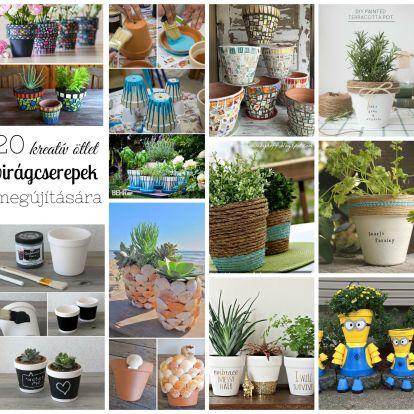 20 csodás ötlet virágcserepek, kaspók megújítására