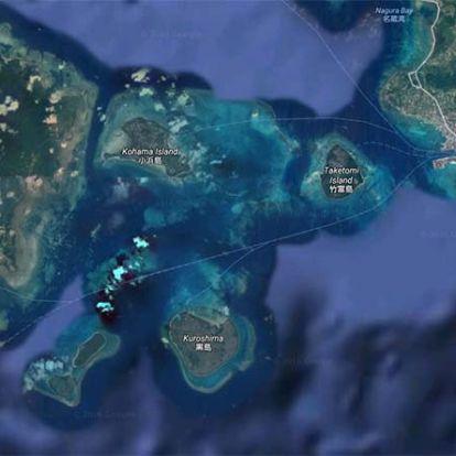 A világ legészakibb koralljait is utolérte a fehéredés