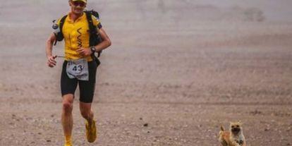 Egy futó örökbefogadja a kóbor kutyát, aki 123 km-t futott vele