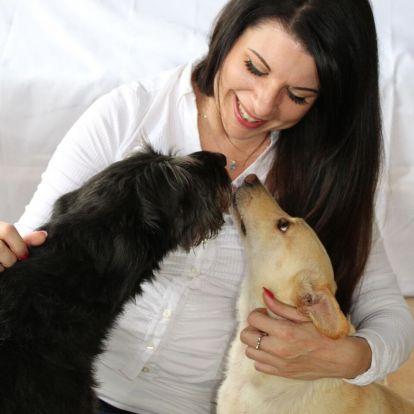 Közös genetikai gyökerei vannak az ember és a kutyák túlzott barátságosságának