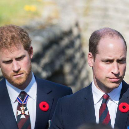 """Vilmos és Harry: """"bárcsak ne tettük volna le olyan gyorsan az utolsó telefont"""""""
