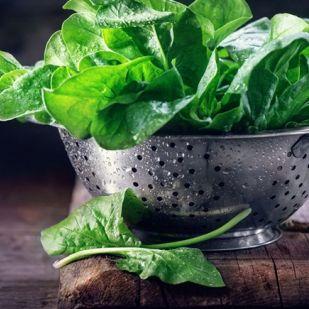 Ezért nem szabad vizes leveleket használni a salátába