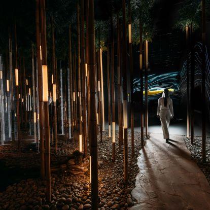 Bambuszerdő is van a Lexus moszkvai szalonjában