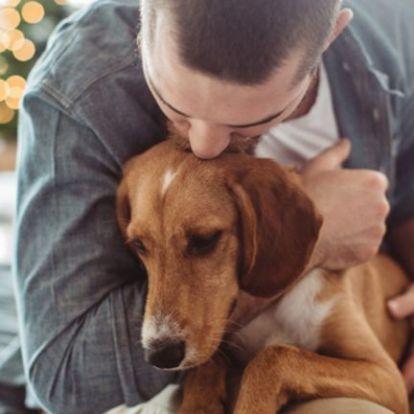 Kevésbé fognak a szívbetegségek a kutyatartókon