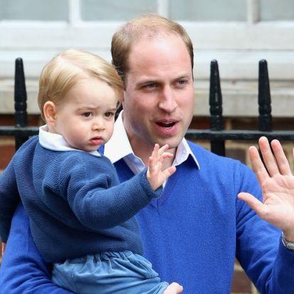 Különleges feladatot kapott György herceg