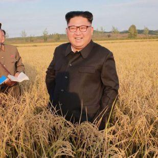 Férges lehet az észak-koreaiak fele