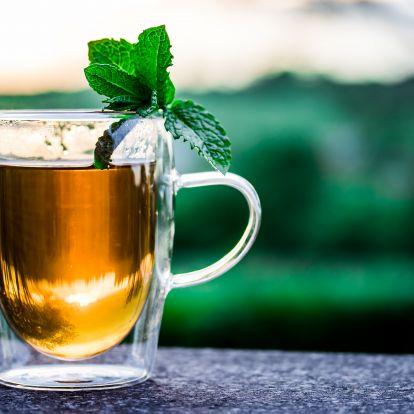 Így készíts otthon csalán teát magadnak friss vagy szárított levélből!