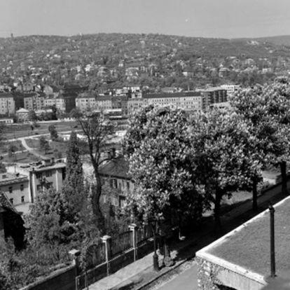 Versenyben a budapesti Sziklakórház az év európai múzeuma címért