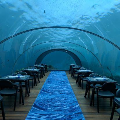 Jóga a víz alatt? Ráadásul a Maldív-szigeteken? Jól hangzik!