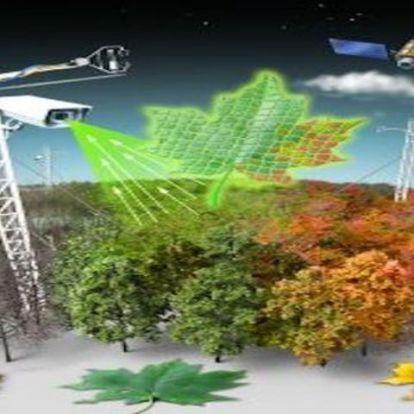 A big data megmondja a melegebb klíma ökoszisztémára gyakorolt hatását