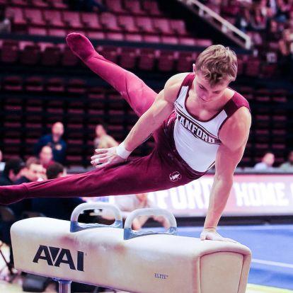 Ryan Sheppard amerikai tornász magyar válogatott lehet