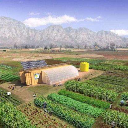 Dobozba csomagolt farm: kiváló megoldás a fenntartható gazdálkodásra
