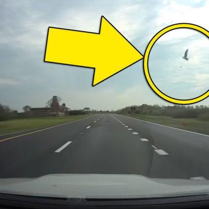 A baleset, amit egyetlen biztosító sem hinne el, ha nem látná a videót!