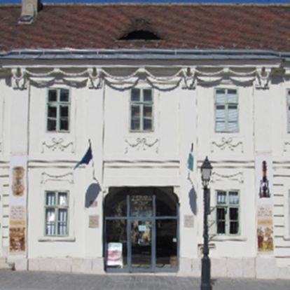 Akit négyszer temettek – Kétszáz éve született Semmelweis Ignác