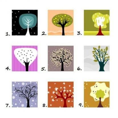 Személyiségteszt: válassz egy fát és olvasd el, mit árul el a személyiségedről