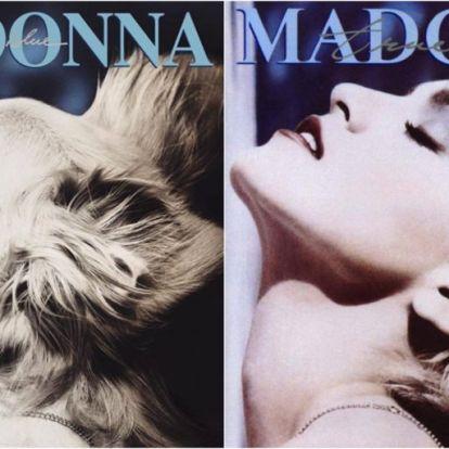 Rajong a net a Madonnát utánozó kutyáért