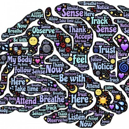 Most akkor van különbség a férfiak és a nők agya között?