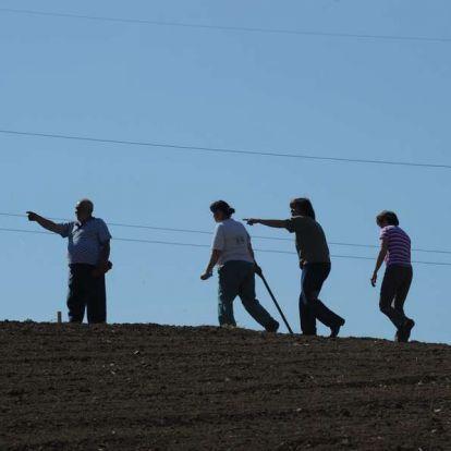 Újra nekigyürkőzne a kormány a földmegosztásnak