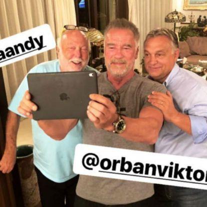 Amikor Vajna Tímea posztol a férjéről, Schwarzeneggerről és Orbánról