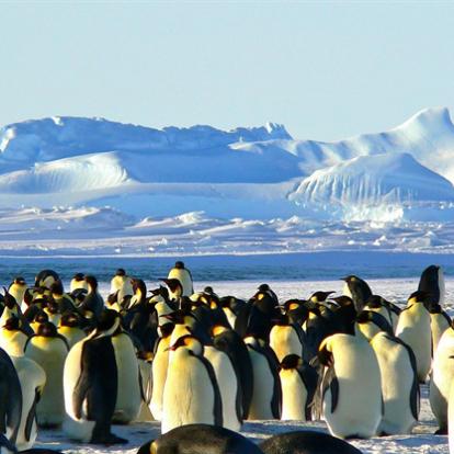 Három ország miatt kerülhet veszélybe az Antarktisz - National Geographic