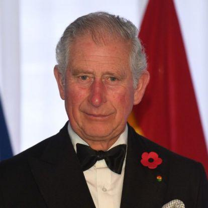 Károly herceg nem tölt elég időt az unokáival Vilmos herceg szerint