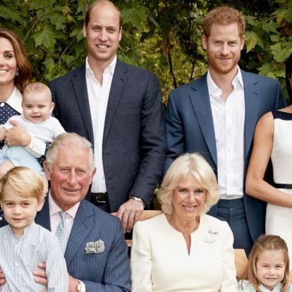 Arcolvasó elemezte a királyi család fotóit