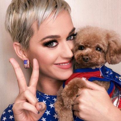 Katy Perry eszméletlen pénzt énekelt össze, ő keresett a legjobban az elmúlt évben