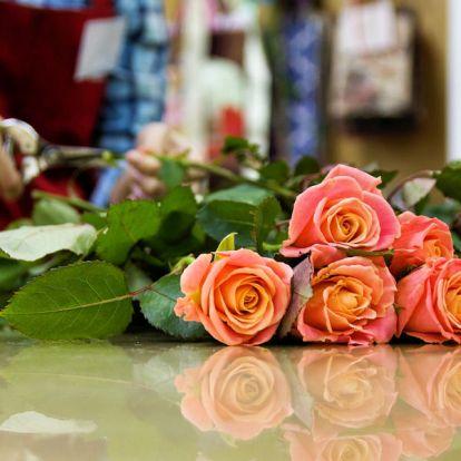 Miért nem illatoznak a mai vágott rózsák?