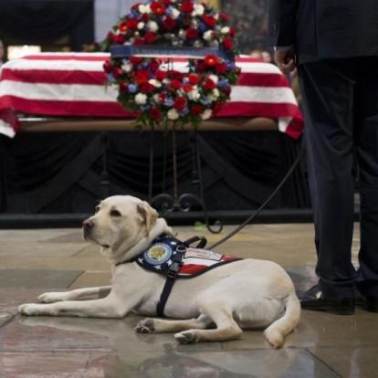 Így búcsúztak el a néhai George H. Bush elnöktől – Fotók!