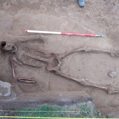 Kéz nélküli ember maradványaira bukkantak a rejtélyes középkori delfinsír mellett
