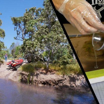 Gázló az ausztrál vadonban