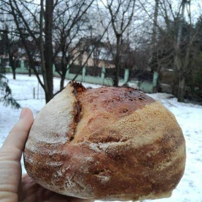 Búzavirág kenyér
