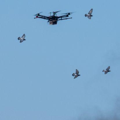 Milyen magasan repülhetnek drónok a házunk fölött? Jön az új törvény