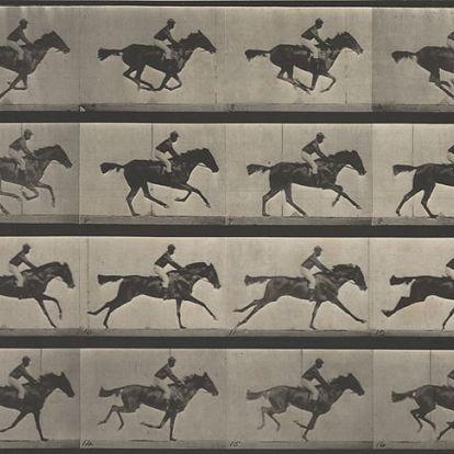 A lovak mozgásából és egy nagy összegű fogadásból kerekedett a mozgókép története