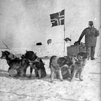 Miért nincsenek már szánhúzó kutyák az Antarktiszon?