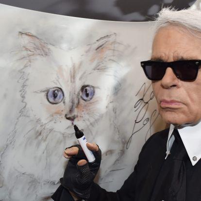 Lagerfeld macskája milliókat örökölhet az elhunyt divattervezőtől