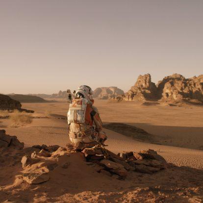 Marsi botanika kezdőknek