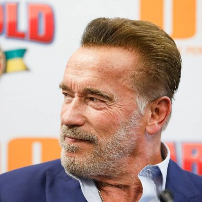 A nap képe: Schwarzeneggernek csak a szakálla ősz