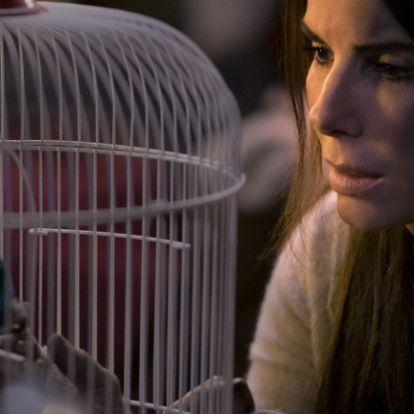 Behódolt a Netflix, kivágja a Bird Box egyik felháborító jelenetét
